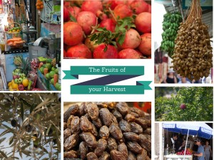 Sukkot is a fest of ingatherig.  Fresh fruits everywhere.  Drink freshly squeezed juice!