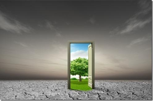 life door tree