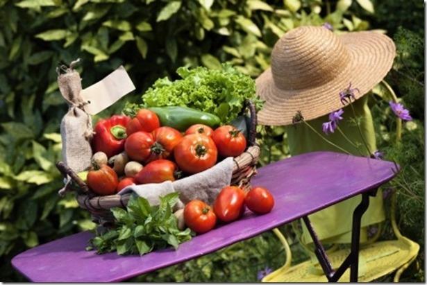 vegetables (3)